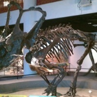 Photo taken at The Academy of Natural Sciences of Drexel University by Jamie L. on 12/15/2011