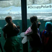 Photo taken at #OccupyPolarBears at @OregonZoo by Krista S. on 10/30/2011