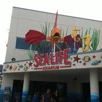 Photo taken at SEA LIFE Aquarium by Jessica w/ E. on 6/14/2012