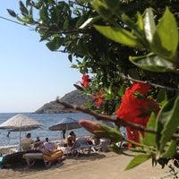 Foto diambil di Arriba Cafe oleh Banu H. pada 8/11/2012