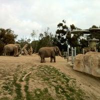 2/27/2012 tarihinde Olga J.ziyaretçi tarafından Elephant Odyssey'de çekilen fotoğraf
