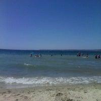 8/25/2012 tarihinde TurgayCeyda T.ziyaretçi tarafından Güzelyalı Sahili'de çekilen fotoğraf