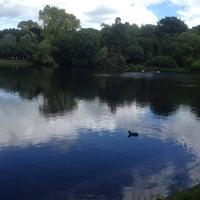 6/17/2012 tarihinde Simone L.ziyaretçi tarafından Hampstead Heath Ponds'de çekilen fotoğraf