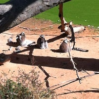 Photo taken at Lemur Exhibit by Michael D. on 10/21/2011