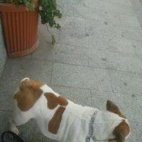 Photo taken at Caffe' Della Posteria by Maurizio F. on 3/24/2012