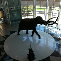Photo taken at Sam Noble Oklahoma Museum of Natural History by Raen L. on 8/28/2011