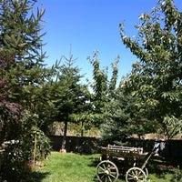 Photo taken at Turgutalp by Cumhur E. on 8/27/2011