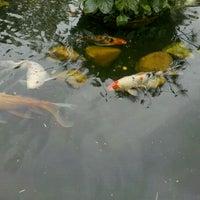 9/15/2011에 Maju R.님이 Cobasi에서 찍은 사진