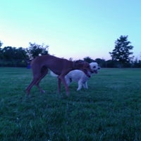 Photo taken at Fort Woof Dog Park by Phadrea D. on 7/20/2012