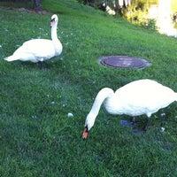 Photo taken at Lake LaVerne by Dara R. on 8/13/2011