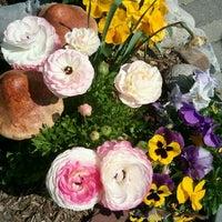 Photo taken at Reynolds Garden Shop by Marta R. on 4/21/2012