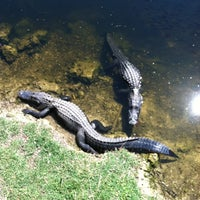 Photo taken at Big Cypress National Preserve by Krys 3. on 2/20/2012
