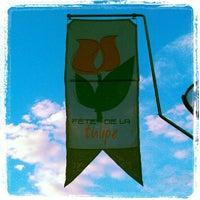 Photo taken at Fete de la Tulipe, Morges by Agb N. on 6/17/2012