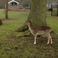 Photo taken at Kinderboerderij De Houthoeve by Annemarie K. on 3/4/2012