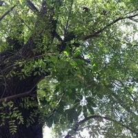Photo taken at Rua Clélia by Gilson G. on 3/25/2012