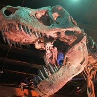 Foto tirada no(a) Houston Museum of Natural Science por eRiC r. em 6/23/2012