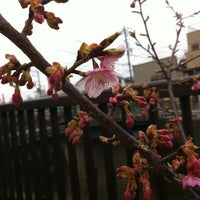 Photo taken at 観音橋 by HIDE O. on 3/4/2012