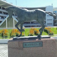 Photo taken at Nakayama Racecourse by Toshio H. on 9/18/2011