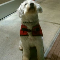 Photo taken at PetSmart by Wendee P. on 12/6/2011