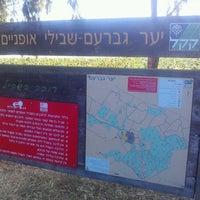 Photo taken at יער גברעם by Hagai P. on 6/2/2012