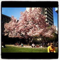 Photo taken at Barnard College by Maria G. on 4/15/2012