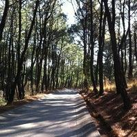 Foto tomada en Bosque Los Colomos II por Lorena C. el 4/10/2012