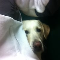 Photo taken at Cicero Animal Clinic by Jes M. on 2/29/2012