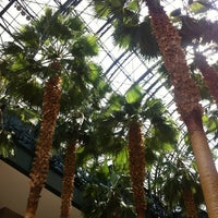 Photo taken at Winter Garden Atrium by Steve A. on 6/28/2012