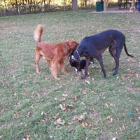 Photo taken at Howard Dog Park by Denise M. on 10/8/2011