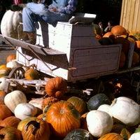Photo taken at Vala's Pumpkin Patch by Dan H. on 10/21/2011