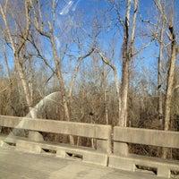 Photo taken at The Atchafalaya Basin by loretta w. on 1/29/2012