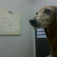 Photo taken at Hospital Veterinario - UPIS by Rafaela M. on 10/7/2011