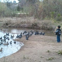 Photo taken at Kit Carson Park by nehla n. on 1/31/2012