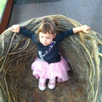 Photo taken at Lindsay Wildlife Museum by Janessa O. on 11/5/2011