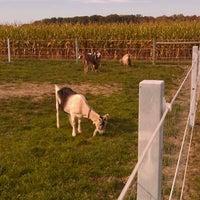 Photo taken at Steele Farms by John W. on 10/9/2011