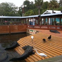 Photo taken at Gatorland by Mario V. on 9/16/2011