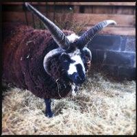 Photo taken at Elmwood Park Zoo by DJ F. on 4/14/2012