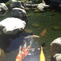 Photo taken at Japanese Friendship Garden by Masha Y. on 9/2/2012