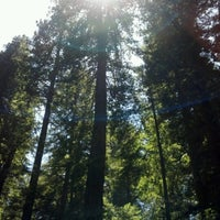 Photo taken at Big Tree by Melodee G. on 7/4/2012