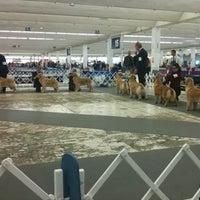 Photo taken at Scott Antique Market (Atlanta Expo Center South) by Carol R. on 2/4/2012