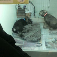 Photo taken at Pet's House by Cristhian G. on 5/6/2012