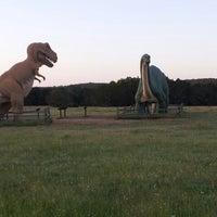 Photo prise au Dinosaur Valley State Park par Robert A. le4/28/2012