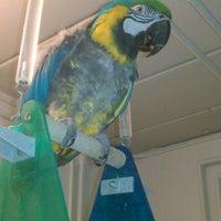 Photo taken at MAARS Parrot Rescue by Mike M. on 1/3/2012