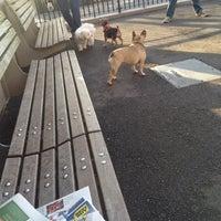 Photo taken at Sirius Dog Run by Rex S. on 3/17/2012