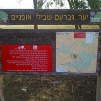 Photo taken at יער גברעם by Hagai P. on 11/5/2011