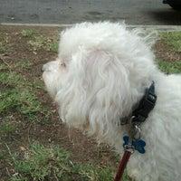 Photo taken at Orizaba Park by Carlos M. on 11/8/2011