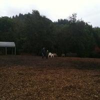 Photo taken at Dog Park at Villa Chanticleer by Katja W. on 10/4/2011