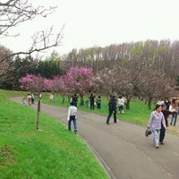 Photo taken at 平岡公園 (梅林) by Yuki on 5/6/2012
