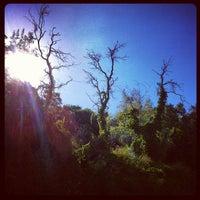 Photo taken at Mount Ogden Golf Course by Dex W. on 9/12/2012