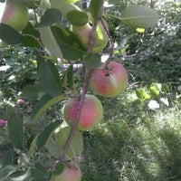 Photo taken at Honey Pot Hill Orchards by Meredith C. on 9/17/2011